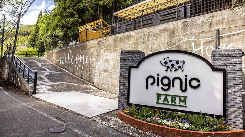 pignic farm